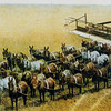 General Farms & Ranches