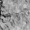 Pomo - Baby Rock Petroglyphs